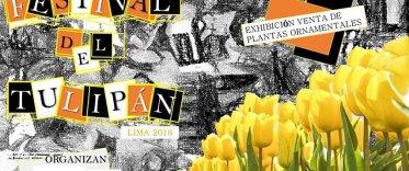 1er Festival del Tulipán