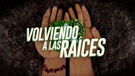 Se prepara la primera serie animada sobre plantas sagradas de la Amazonía