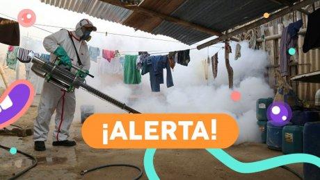 ¡A cuidarse del dengue!