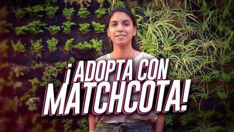 Matchcota: La plataforma que te ayudará a encontrar a tu mascota ideal