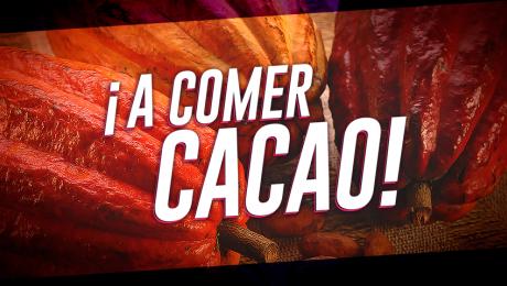 6 razones para consumir cacao peruano