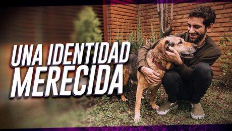 Mascotas con identidad: Conoce al RENIAN