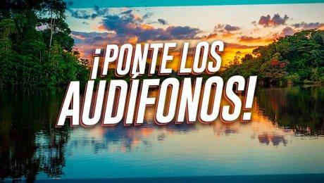 Así suena la Amazonía