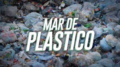 ¿Cuál es el impacto del plástico que hemos generado hasta el momento?