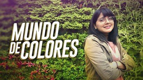 Vitaminas Gráficas: Llenando de colores el mundo de la imaginación