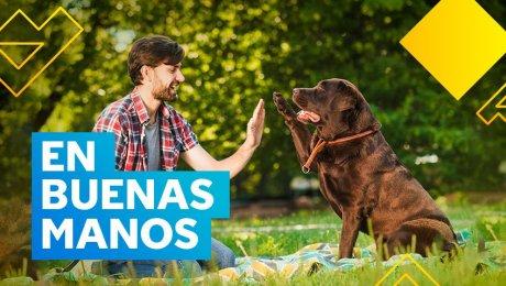 Esta plataforma te contacta con el candidato ideal  para cuidar a tu mascota