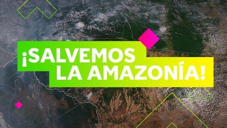 10 acciones para conservar la Amazonía