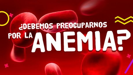 La anemia, el enemigo de nuestra sangre