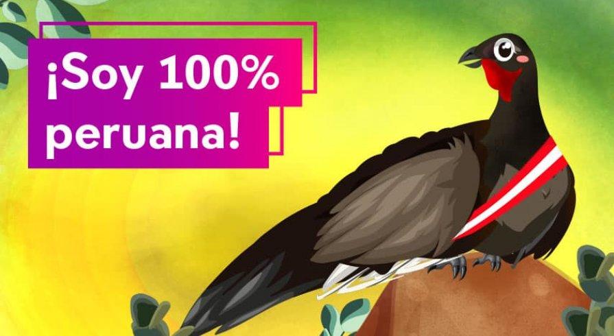 La pava aliblanca, la misteriosa ave que solo encontrarás en nuestro país