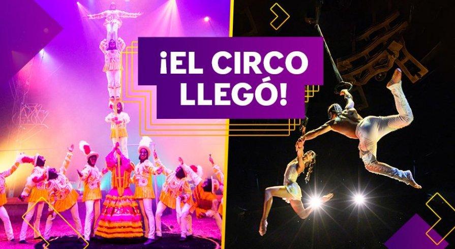 ¡Disfruta de espectáculos, ejercicios y actividades circenses en tu casa!