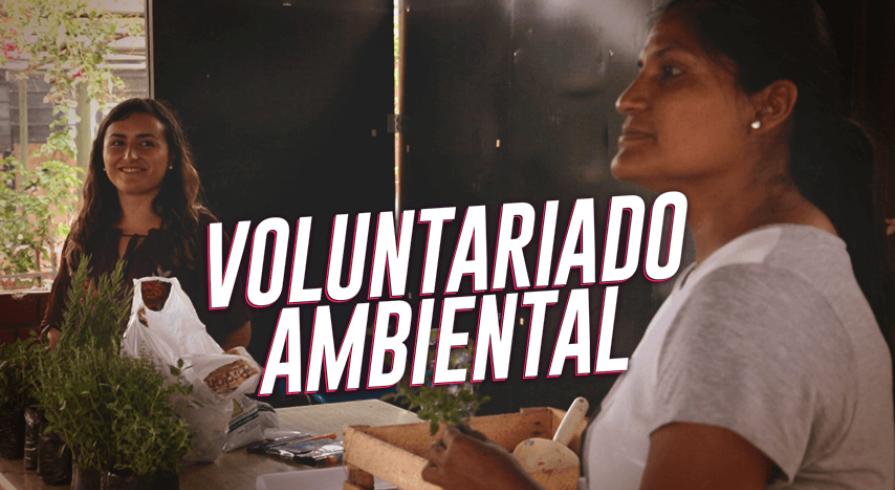 Acción Voluntaria: Munay y su compromiso con el planeta