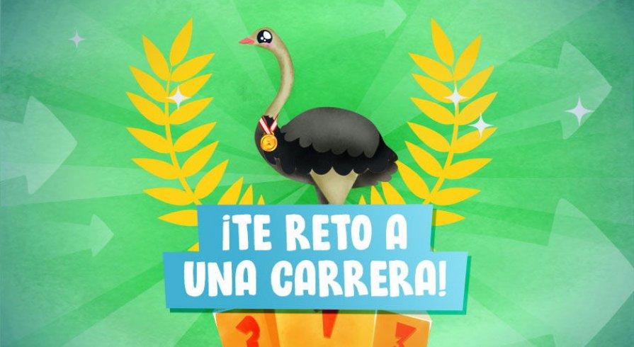 Conoce al suri, el ave más grande del Perú