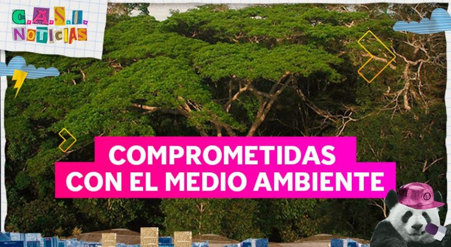 ¡'Army' peruana ha adoptado un bosque en Madre de Dios en homenaje a BTS!