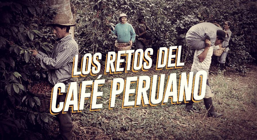 Día del café peruano: Estos son algunos de sus retos