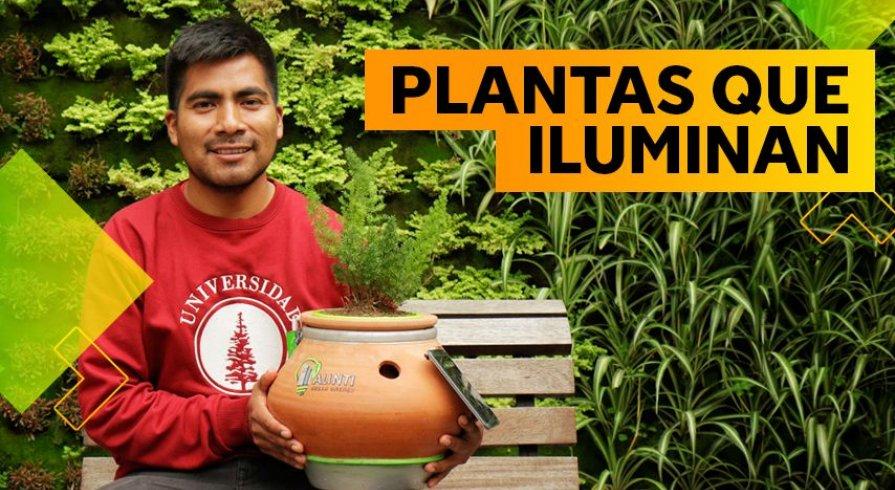 Hernán Asto, el joven ingeniero que logró generar energía eléctrica con plantas