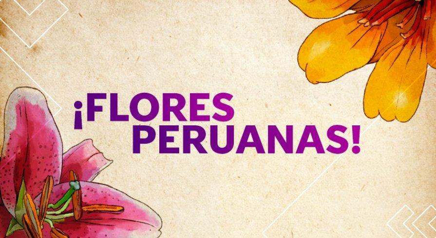 Estas Son Las Flores Más Bonitas De Todo El Perú